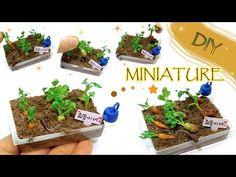 tutorial: miniature vegetable garden