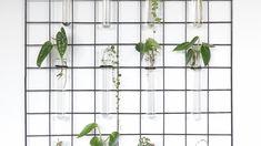 Rek voor stekjes of bloemen Diys, Art Deco, Urban, Interior Design, Architecture, Plants, Diy Ideas, Decor, Plant Cuttings