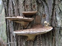 Fairy House utilizing tree growths