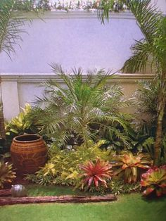 Tropical garden - more ideas with pot
