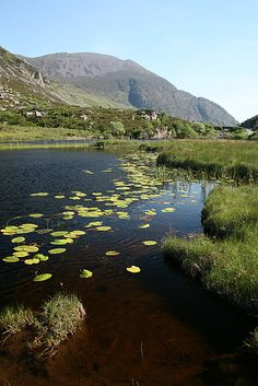 Killarney - Ireland - Book Now - http://search.pricebuster-travel.com/City/Killarney.htm