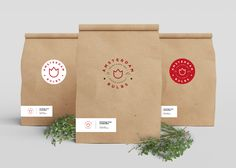 AMSTERDAM BULBS BRANDING on Behance