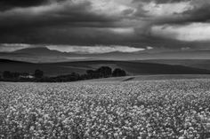 Ominous Beauty Beauty Photography, Saatchi Art, Landscapes, African, Explore, Mountains, Black And White, Beach, Water