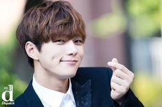 Dimple smile with finger heart^^ Btob, Vixx, Asian Actors, Korean Actors, Shinee, Sehun, Dramas, Kim Myungsoo, Infinite Members