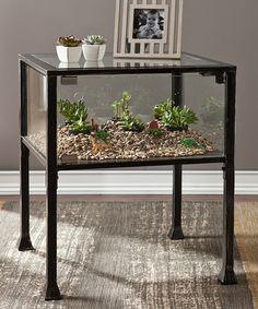 Look what I found on #zulily! Terrarium Display End Table #zulilyfinds