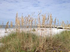 Fort De Soto beach FL