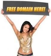 Find free  domain transfer by which you can Transfer your domains from any registrar.This facility is only available at myfreedomain.in for free.Grab it soon. Read more information @ http://www.myfreedomain.in/