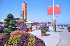 天津北塘集装箱海鲜街