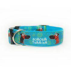 Obojek Blackberry   Collar by Blackberry #border #terrier #borderterrier #border_terrier #collar #customized #design #blackberry #dog #pet #light #blue #light_blue #lightblue #obojek #pes #mazlicek #svetle_modra #svetla #modra