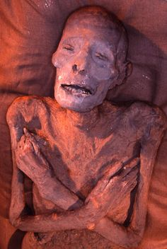 3,000-year-old mummy of Menpehtyre Ramesses I, founding Pharaoh of Egypt's 19th dynasty (late 1292–1290 BC or 1295–1294 BC). His brief reign marked the transition between the reign of Horemheb who had stabilized Egypt in the late 18th dynasty and the rule of the powerful Pharaohs of this dynasty, in particular his son Seti I and grandson Ramesses II, who would bring Egypt up to new heights of imperial power.
