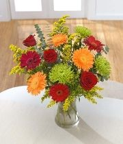 Citrus Zing. Brighten someone's day with glowing red & orange Gerbera. Vase not included.