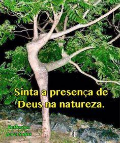 SemanadoMeioAmbiente #MeioAmbiente #Natureza #Deus