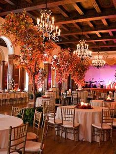 Gorgeous fall wedding. Small trees on the floor in place of large centerpieces.
