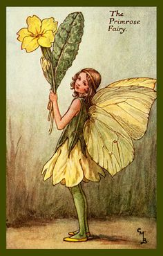 The Primrose Fairy by Cicely Mary Barker from the 1920s. Quilt Block of vintage fairy image printed on cotton. Ready to sew.  Single 4x6 block $4.95. Set of 4 blocks with pattern $17.95.