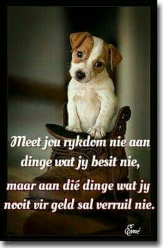 Tjoklets vir my siel. Good Morning Inspirational Quotes, Good Morning Quotes, Afrikaanse Quotes, Funny Quotes, Qoutes, Strong Quotes, Creative Words, True Words, Christian Quotes