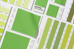 Pantone, the color authority, reveled yesterday the hue that will color Greenery. Find here how to decorate with Greenery, Pantone Color Of The Year Colour Schemes, Color Trends, Design Trends, Color Palettes, Coral Pantone, Pantone Color, Verde Greenery, Blue Photography, Color Of The Year 2017 Pantone