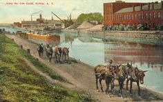 We did a mule pulled barge in the 80's on the Erie Canal