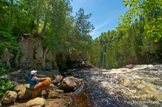 Top 5 MN dog-friendly state parks - #onlyinmn - Judge C. R, Magney State Park dog friendly park