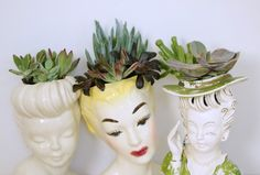 succulant headvase fb 1