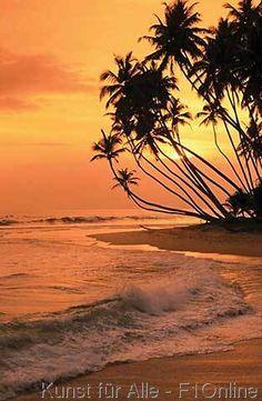 Sri Lanka, Dalawela, Strand طبيعة ساحرة بسريلانكا ، وسبحان الله وبحمده !!