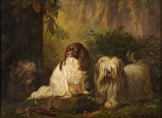 Johann Wegener / Scottish Terrier & a King Chas. Spaniel in a landscape Old Paintings, Animal Paintings, Beautiful Paintings, King Charles Dog, King Charles Spaniel, Cavalier King Spaniel, Papillon Dog, Dog Portraits, Dog Art
