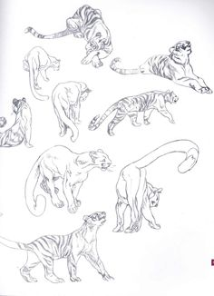 Claire Wendling is an artist who's legendary for her grasp of anatomy in both animals and humans alike. She's a great source for any artist who wants to ...