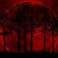 Requiem For Oblivion - Aurovine