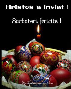 Easter Eggs, Christmas Bulbs, Holiday Decor, Food, Sign, Facebook, Google, Easter Activities, Christmas Light Bulbs