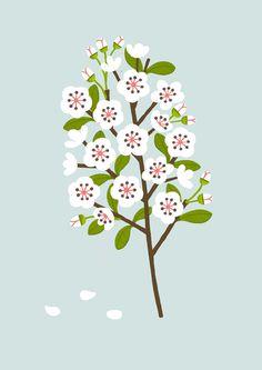 - - NEW - - Blossom - - - - Sarah Abbott - - -