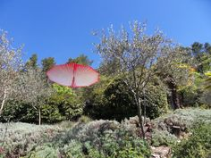 Fontaine du Pommier - France  Paddo, Professional terrace parasol   www.sywawa.eu  design by Lieven Musschoot & Mathias Hennebel