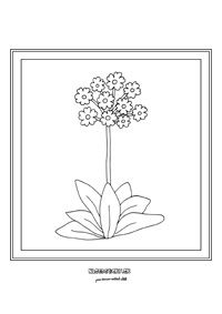 Prvosienka - jarné kvietky Glass Flowers, Colouring Pages, Diy Projects To Try, Hana, Spring, Color, Flowers, Lawn And Garden, Quote Coloring Pages
