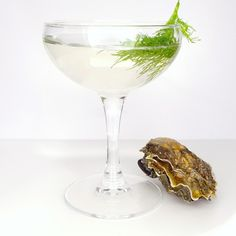 Plymouth Gin / Cawsands Martini with Oysters | omnivore omnivore2 | OMNIVORE World Tour London at OMNIVORE World Tour London. Archiving Food Photography | Gastronomy