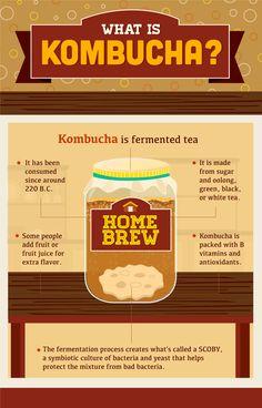 Home Brew Fermented Kombucha Tea Homesteading  - The Homestead Survival .Com