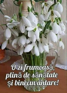 Trending Memes, Good Morning, Funny Jokes, Beautiful Pictures, Plants, Cards, 8 Martie, Smile, Blouse