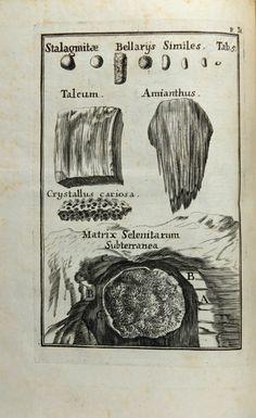 Lang, Carl Nicolaus (1708)