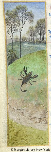 Book of Hours, MS M.6 fol. 11v - Images from Medieval and Renaissance Manuscripts - The Morgan Library & Museum