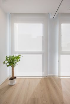 Shop Interior, My Ideal Home, Interior, House, Home Curtains, Bedroom Decor, Floor Colors, Home Decor, Home Deco