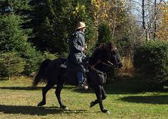 Quebec, Canada.  http://www.hiddentrails.com/tour/pq_appalachian_explorer.aspx