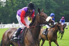 A look ahead to Royal Ascot Who Will Win, Gold Cup, Royal Ascot, Hurdles, Horse Racing, Queen Elizabeth, Riding Helmets, Champion Hurdle, Shopping