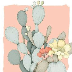 Prickly Pear and Cholla History and Use - Gardening - Mother Earth Living Pear Drawing, Cactus Drawing, Cactus Painting, Garden Drawing, Cactus Flower, Cactus Plants, Flower Pots, Cactus Illustration, Floral Illustrations
