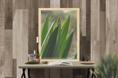 yucca leaves green abstract plants nature succulent Fine Art Photography, Order Prints, New England, Succulents, Photo Gifts, Leaves, Display, Abstract, Frame