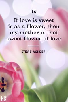 """Sweet flower of love."""" see more inspirational mother's day Mothers Day Crafts, Happy Mothers Day, Mothersday Quotes, Heart Warming Quotes, Perfect Word, Quotes About Motherhood, Sweet Quotes, Mother's Day Diy, Flower Quotes"""