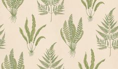 Woodland Fern (DAPGWO102) - Sanderson Wallpapers - A delicate, intricate pen and ink drawing of 3 different fern species.  Available in 5 colourways – shown in the fresh green on a neutral stone beige. Please ask for sample for true colour match.