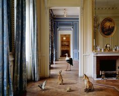 "Karen Knorr Photography Fabels ""Corridor [Carnavalet]"" seriously obsessed"