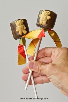 Teddy Graham S'more Pops by Tastes of Lizzy T's. These are probably the easiest of all the Teddy Graham recipes, and they are great for the summer, since they are no bake.  My kids were so excited about these.  Marshmallows…chocolate…Teddy Grahams…what's not to love?!