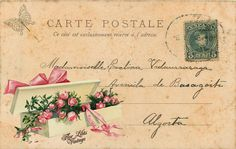 Vintage Roses Postcard ~ Flor Lilás Vintage
