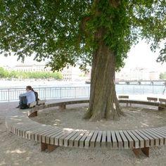 Hardwood Circular Bench Encircling Tree
