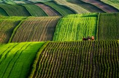 A farm in the Roztocze region of eastern Poland Poland Travel, Italy Travel, Visit Poland, Native Country, Across The Border, Green Landscape, Largest Countries, Baltic Sea, Central Europe