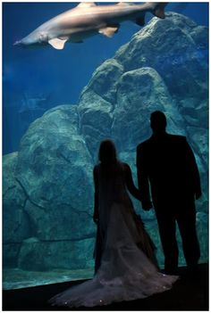 "Your ""must have"" pics are very different when you are planning an Aquarium Wedding, haha"
