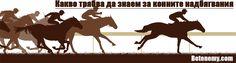 Варианти за залагане на надбягвания с коне. В тази статия сме споделили интересни съвети и видове залози, които са характерни за конните надбягвания